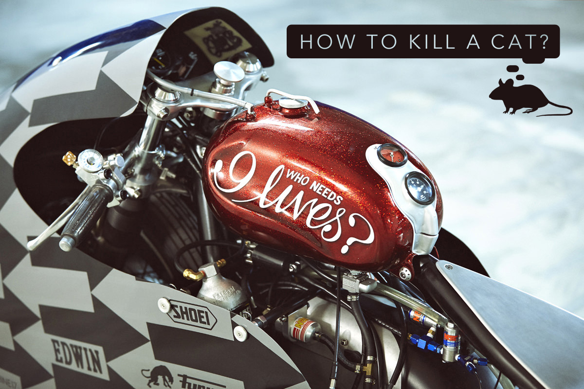 Return of the Cafe Racers - How to kill a cat at Glemseck 101